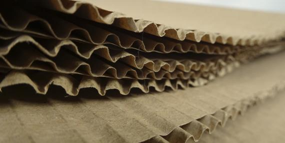 Detail of Corrugated cardboard